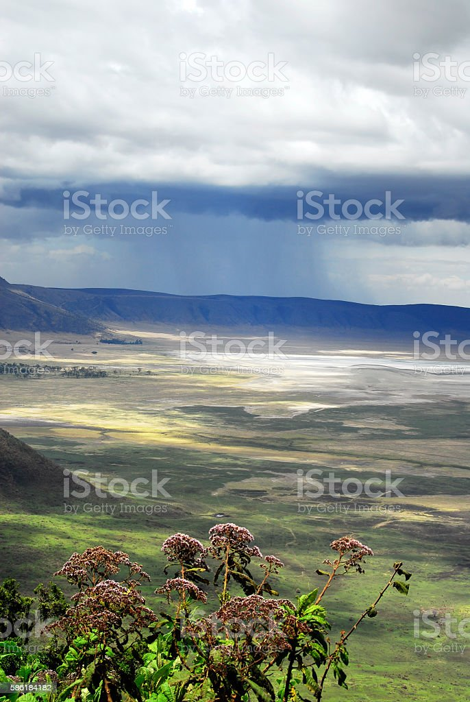 View over the Ngorongoro crater,Tanzania stock photo