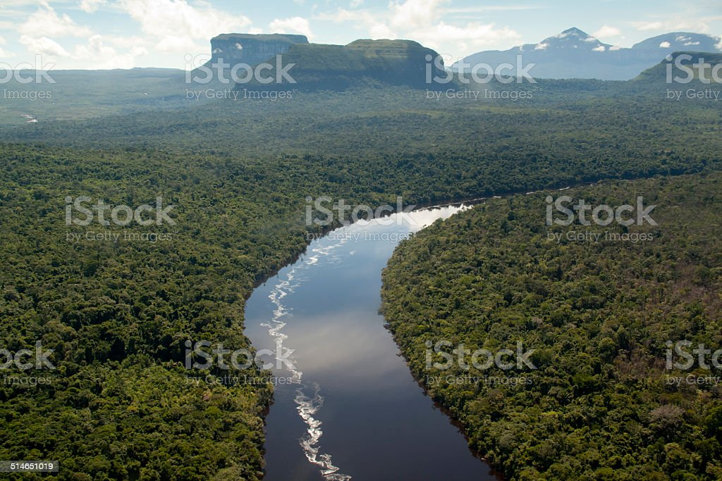 View over the Orinocco river stock photo