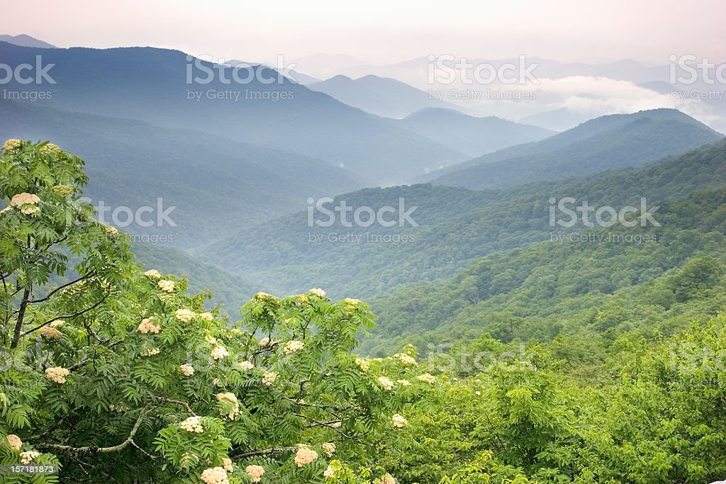 View overlooking the Blue Ridge Mountains stock photo