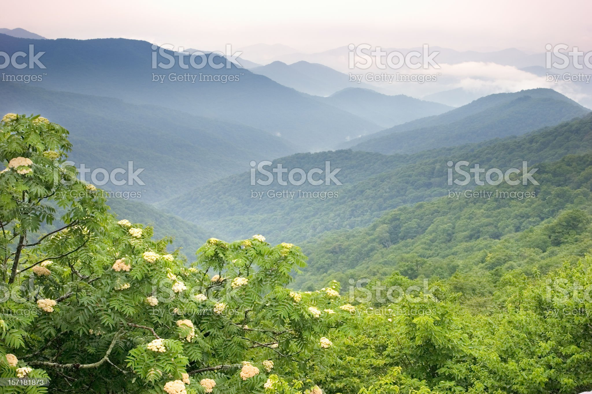 View overlooking the Blue Ridge Mountains royalty-free stock photo