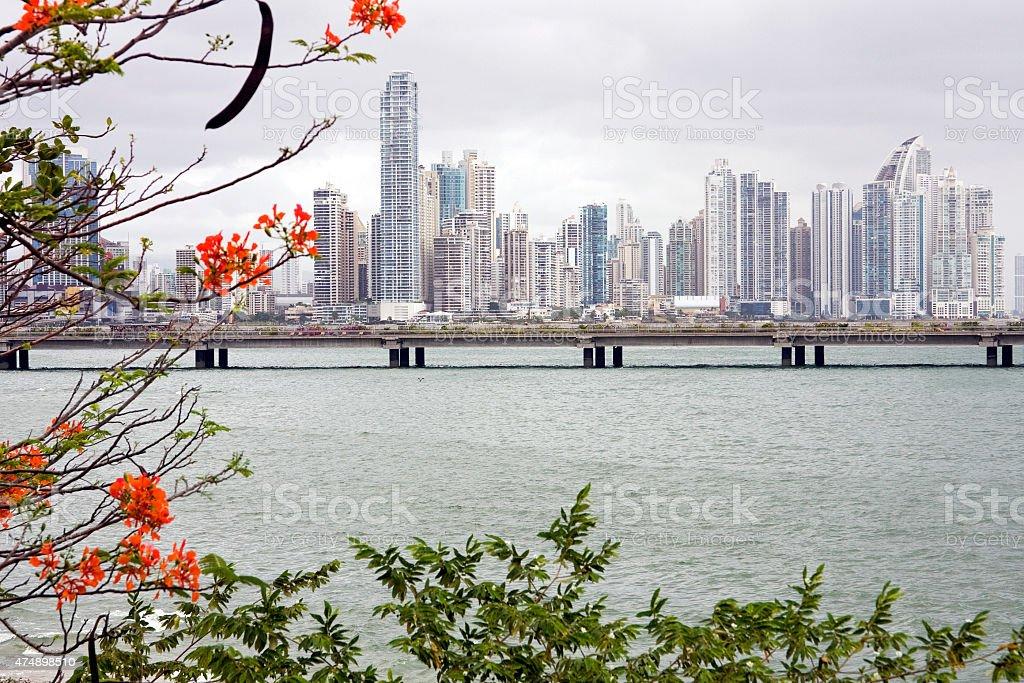 View Panama City stock photo