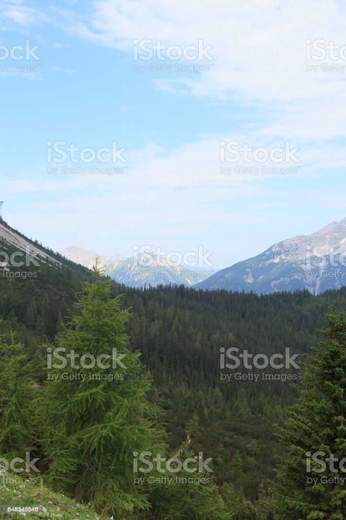 View photos from the gondola stock photo