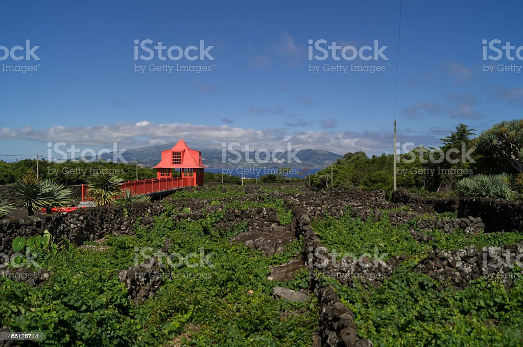 View post of the wine museum stock photo