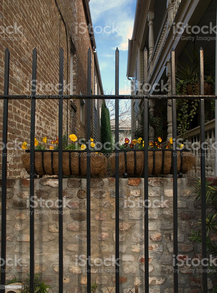View Through an Iron Gate royalty-free stock photo