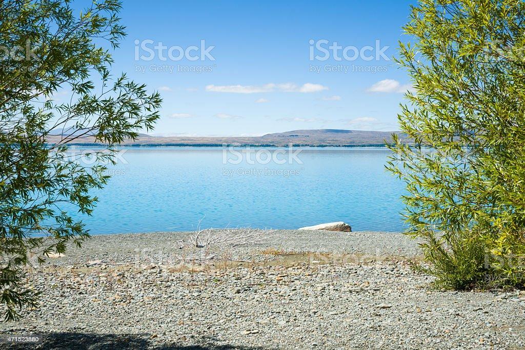 View through green trees across stony shore of Lake Pukaki. stock photo