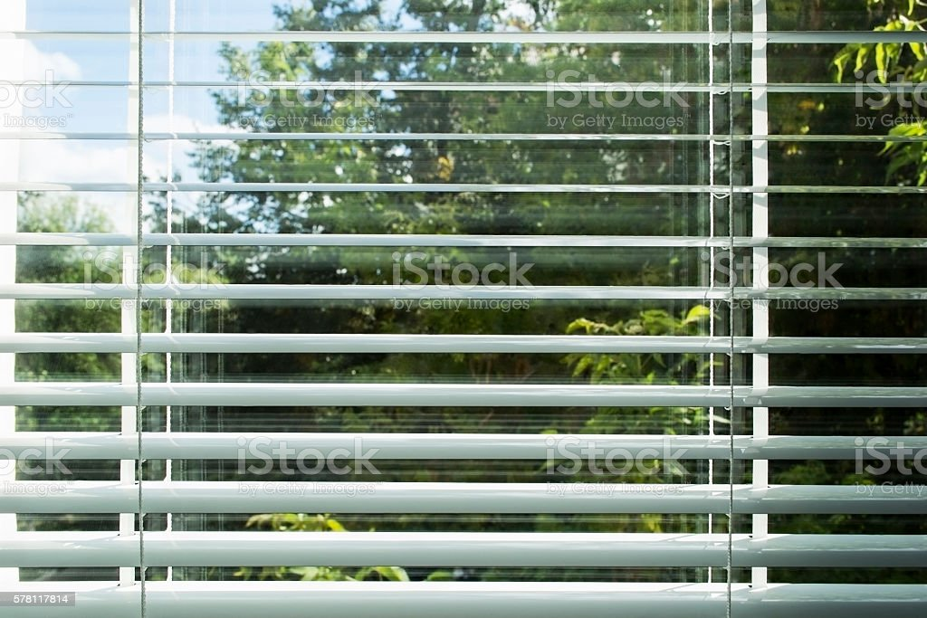 View through window blinds stock photo