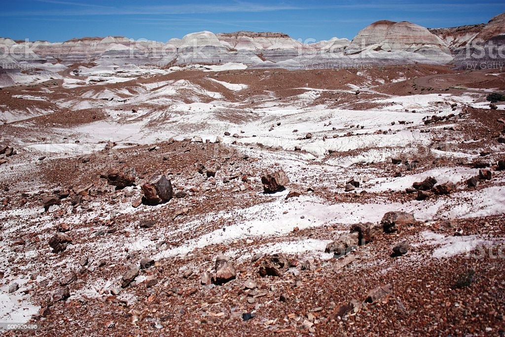 View to Blue Mesa Petrified Forest National Park in Arizona stock photo