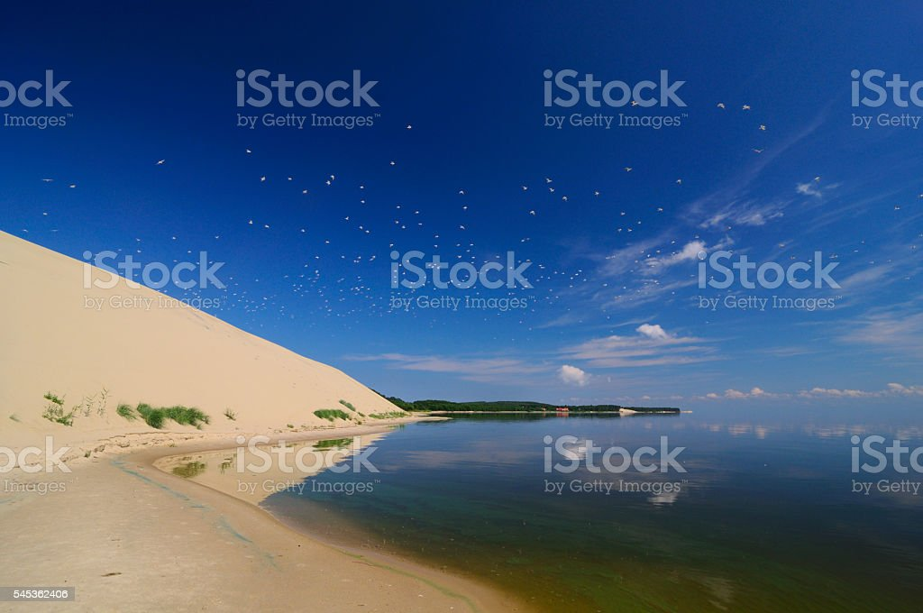 View to curonian spit from the bay, Russia, Zelenogradsk stock photo
