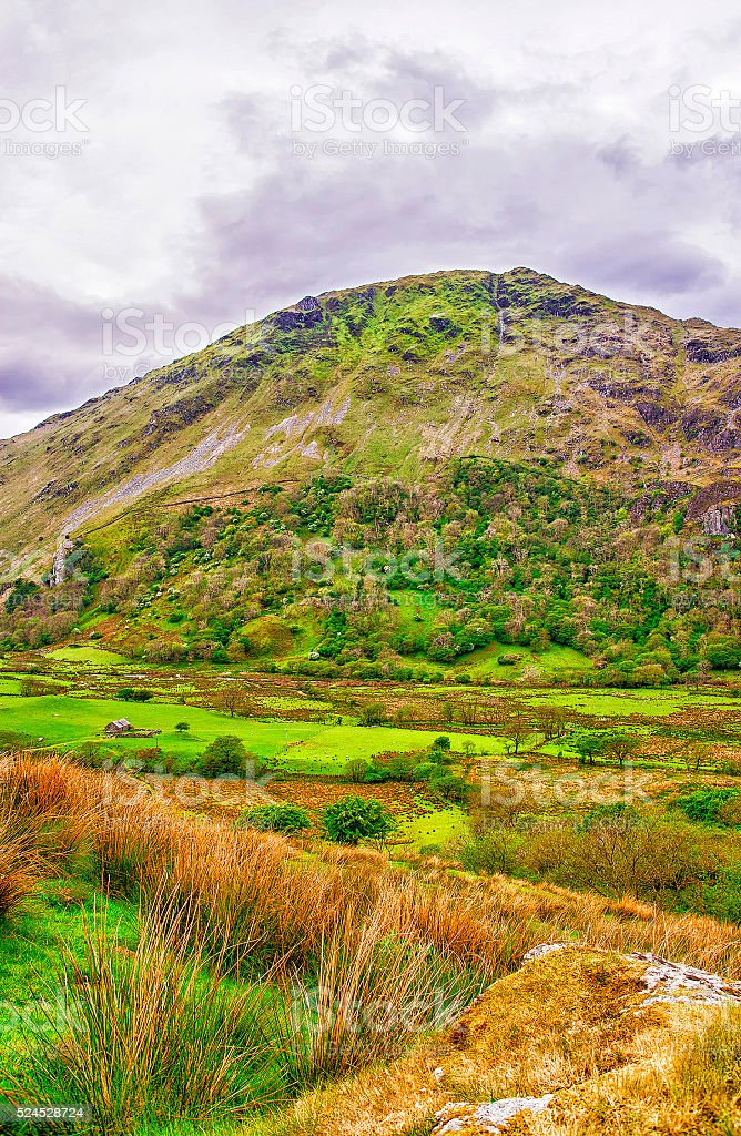 View to hill in Snowdonia National Park in North Wales stock photo