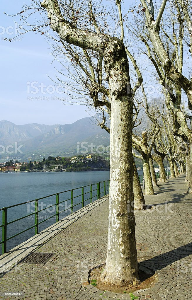View to the Alp. royalty-free stock photo