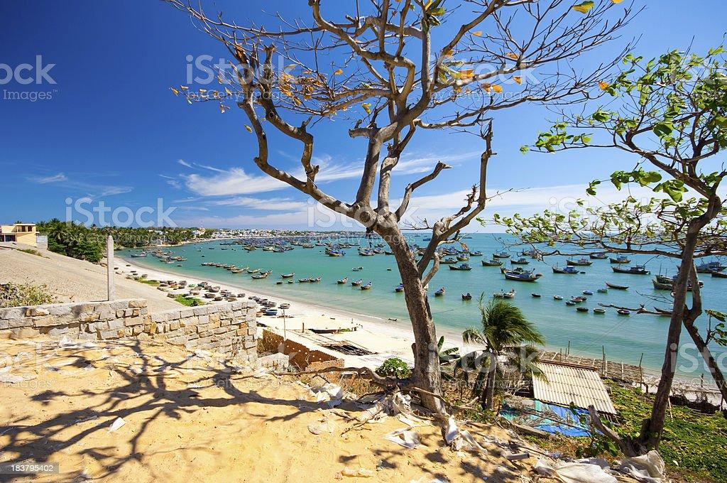 view to the harbor Vietnam Mui Ne through tree branches stock photo