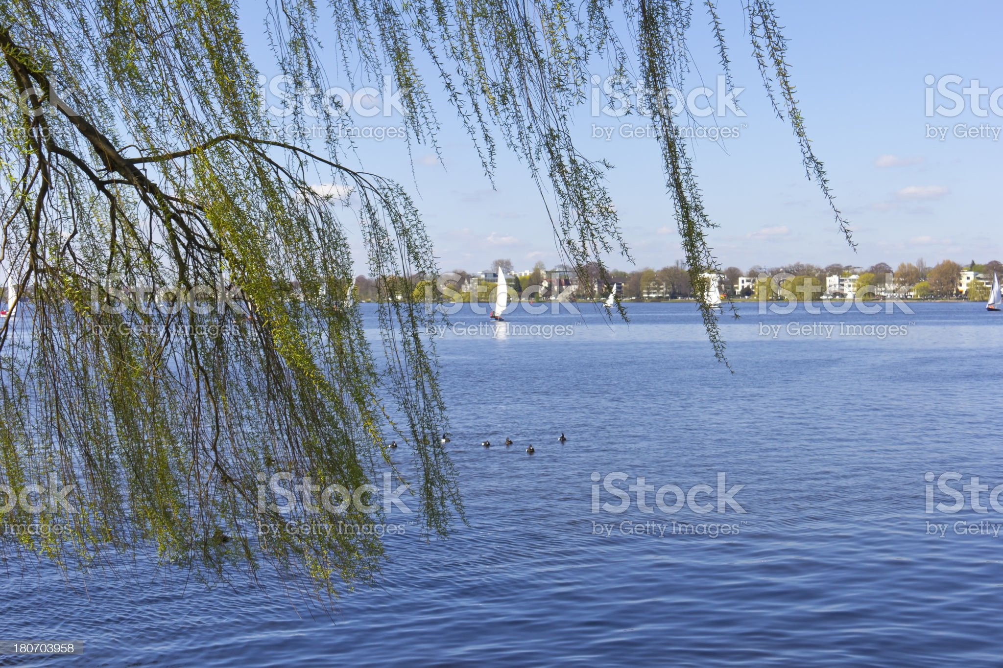 View to the Outer Alster in Springtime royalty-free stock photo