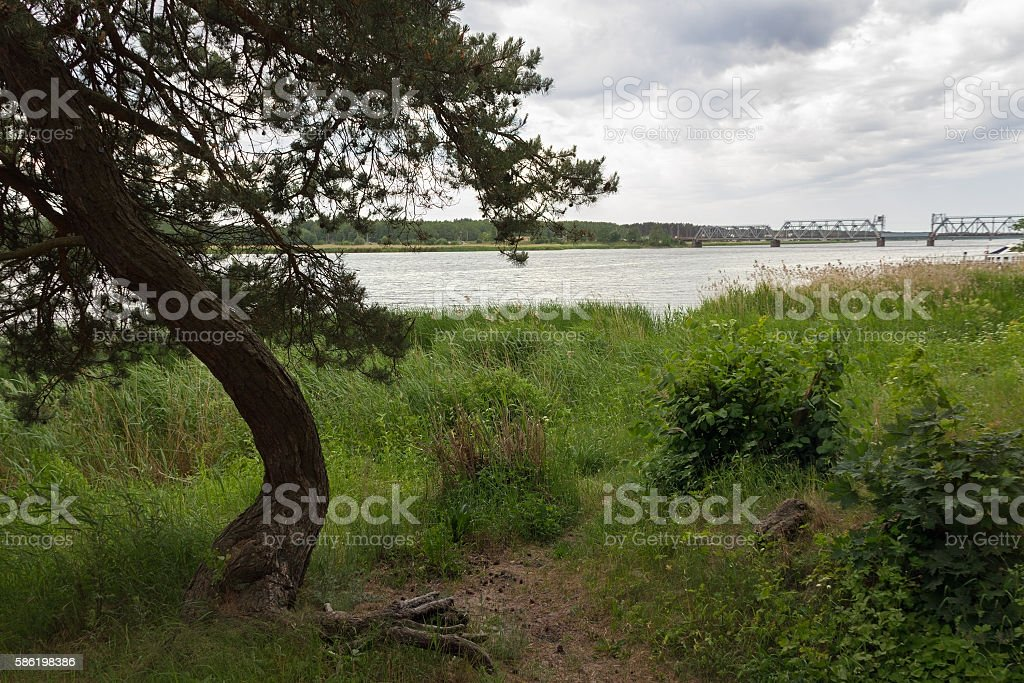View to the river. stock photo