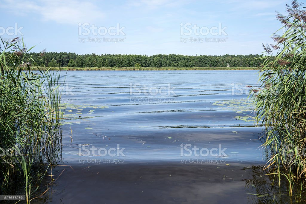 view to the river with bents stock photo