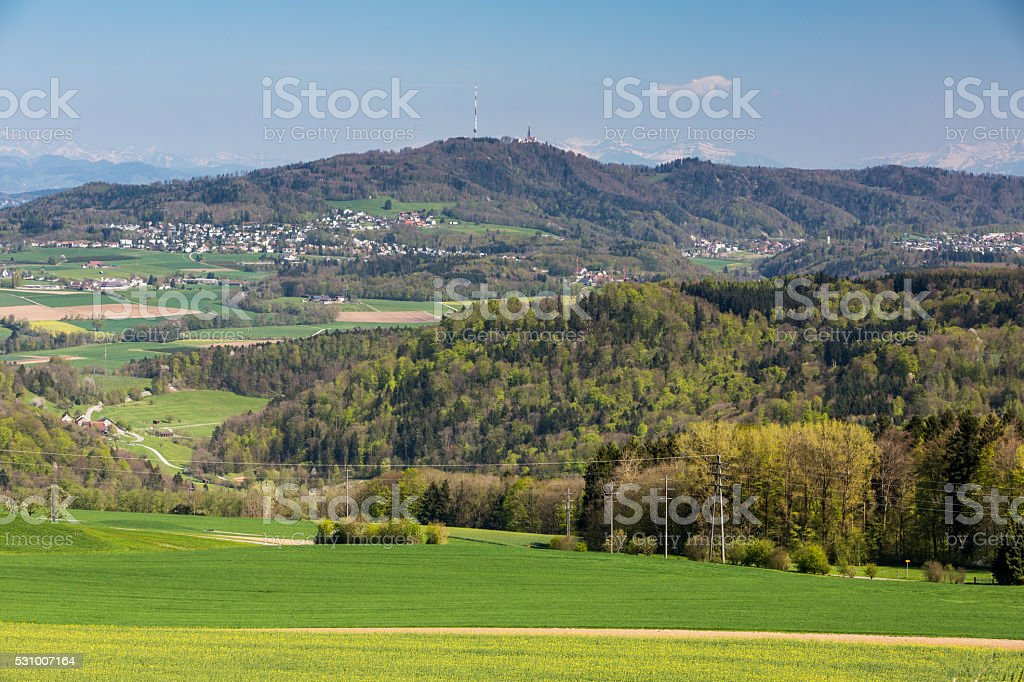View to Uetliberg, near Zurich stock photo
