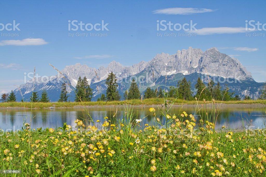 view to Wilder Kaiser mountains stock photo
