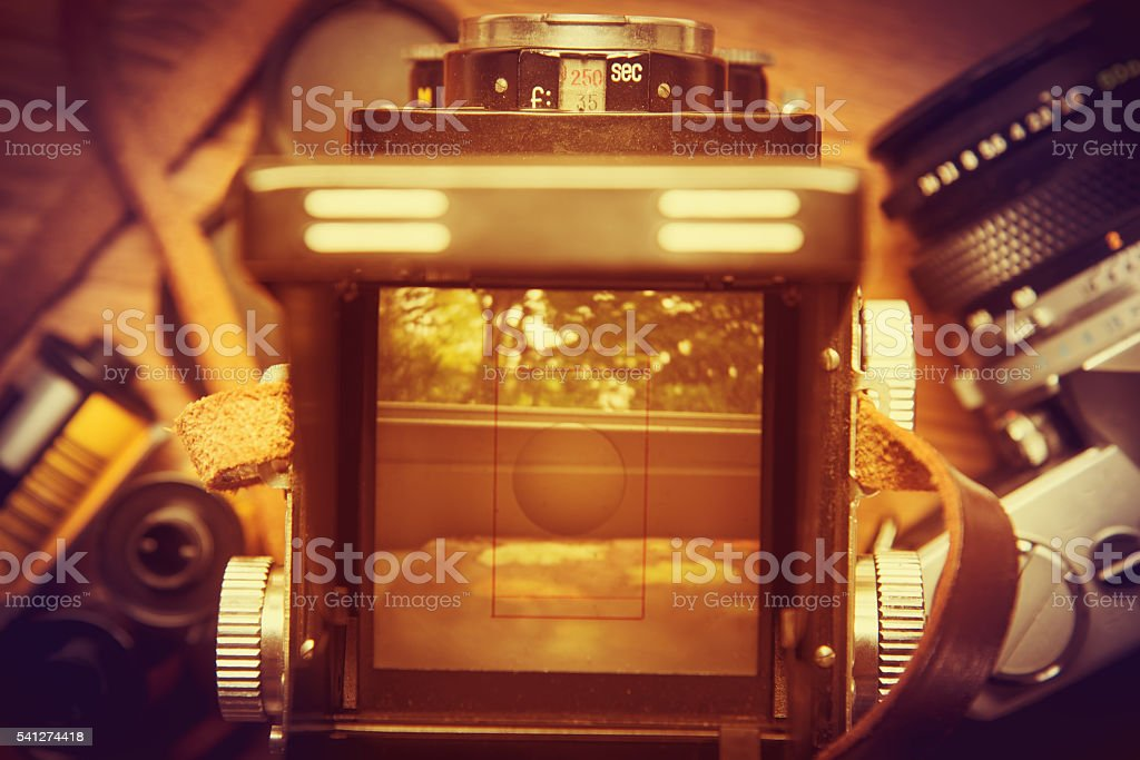Viewfinder of a retro twin-lens camera showing a tree. stock photo