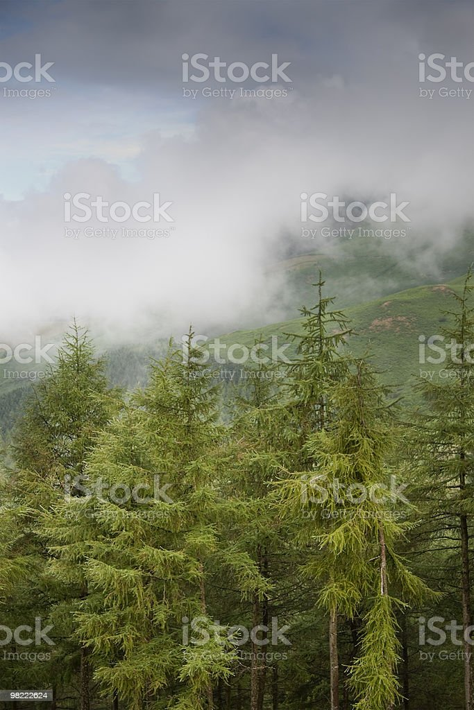 Views from the Latrigg area stock photo