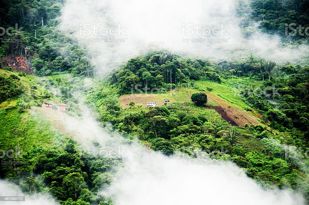Views from Yungas Road stock photo