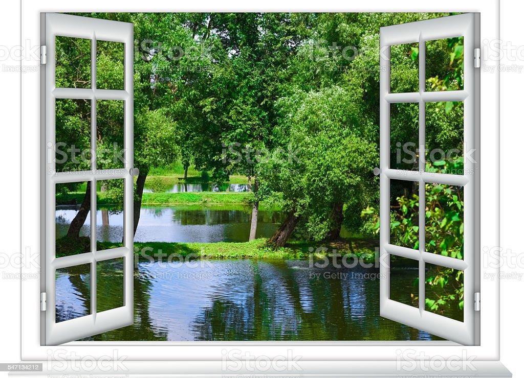 views of the pond stock photo