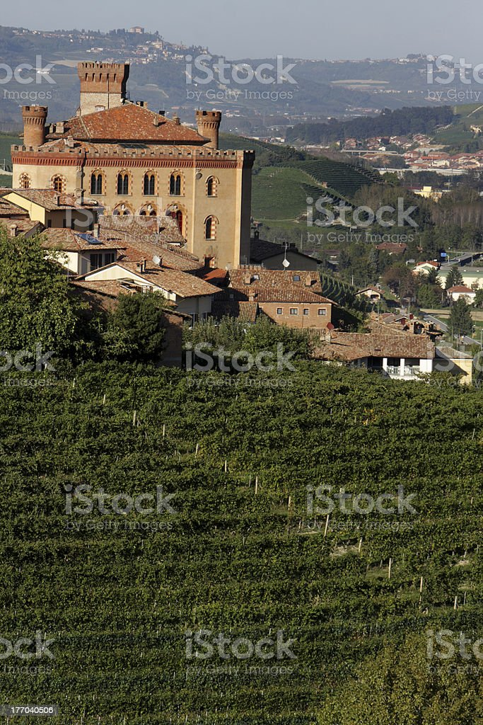 Views the Castle of Barolo royalty-free stock photo