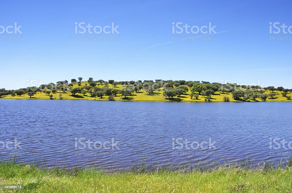 Vigia dam, alentejo region, Portugal stock photo