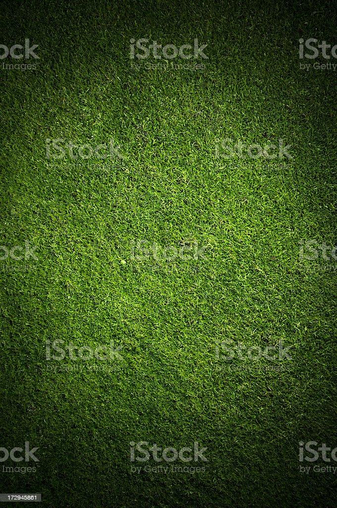 Vignette Grass royalty-free stock photo