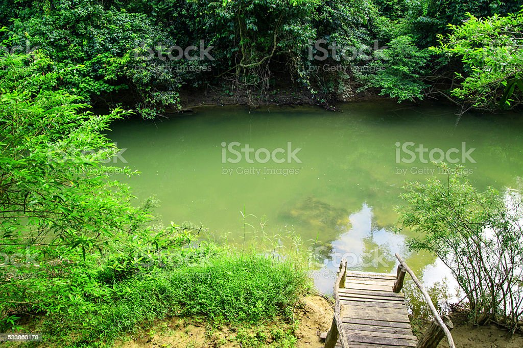 Viiew of Wooden stairs and streams. stock photo