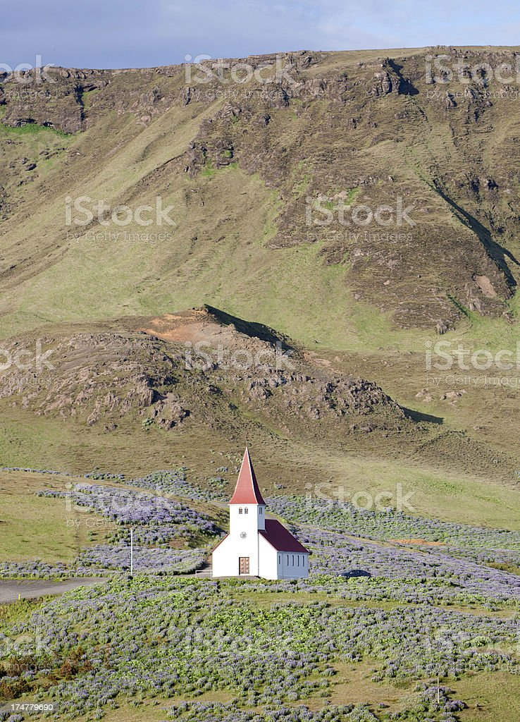 Vik, Iceland hillside church and wildflowers royalty-free stock photo