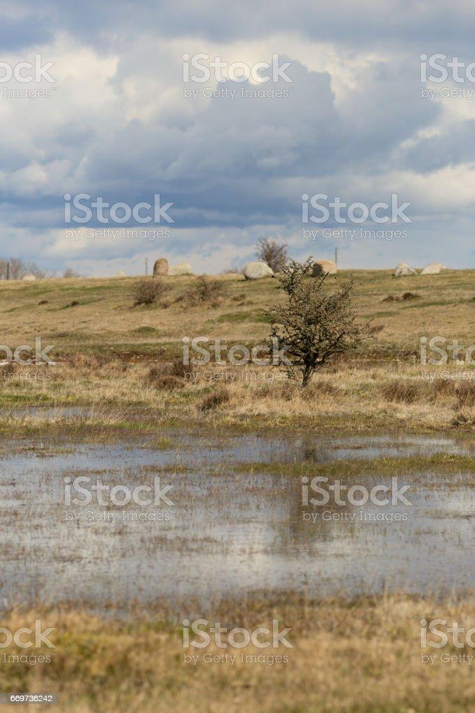 viking burial field stock photo