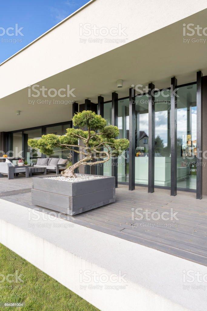 Villa exterior with bonsai stock photo
