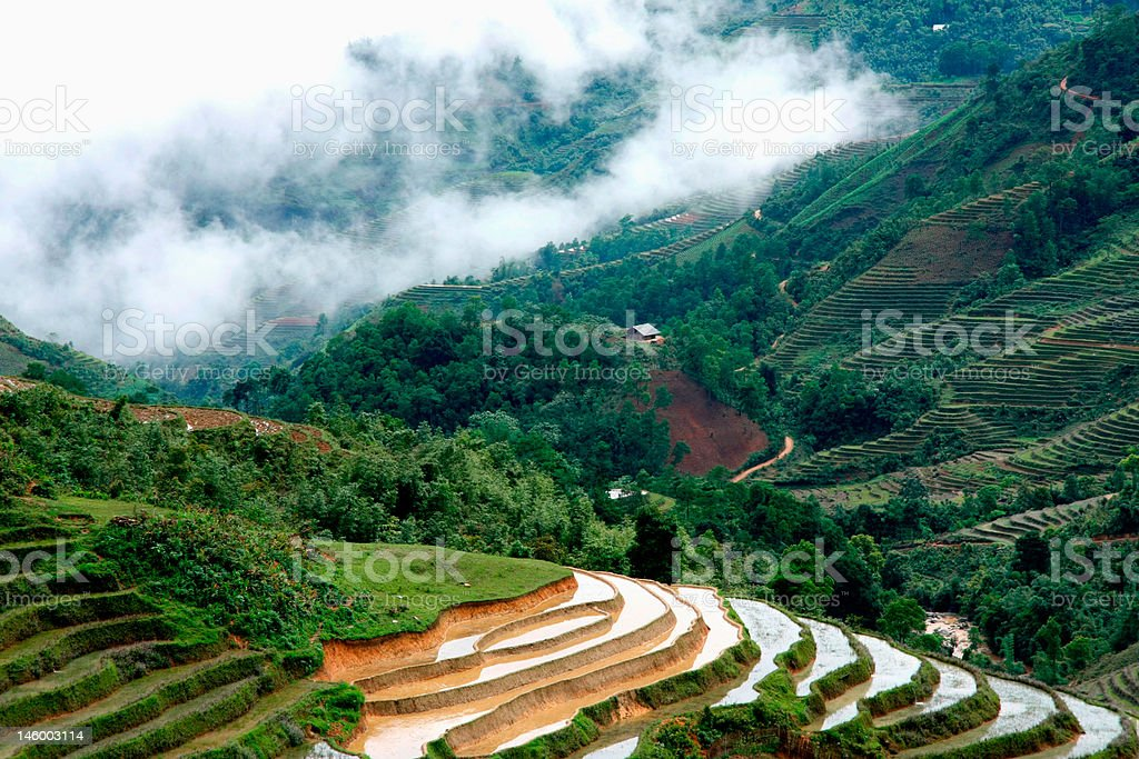 Village and Rice field curves royalty-free stock photo