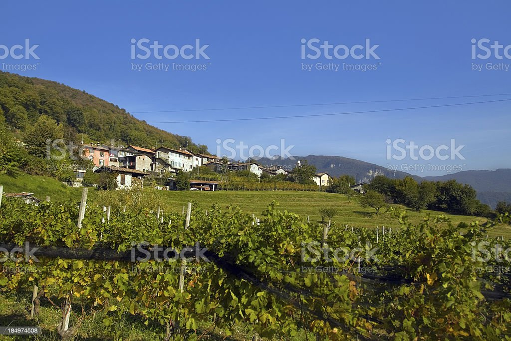 Village and vineyard in Ticino Canton royalty-free stock photo