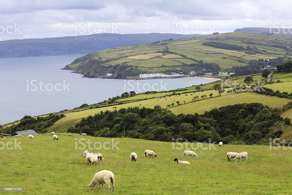 village by the lake, Ireland. stock photo