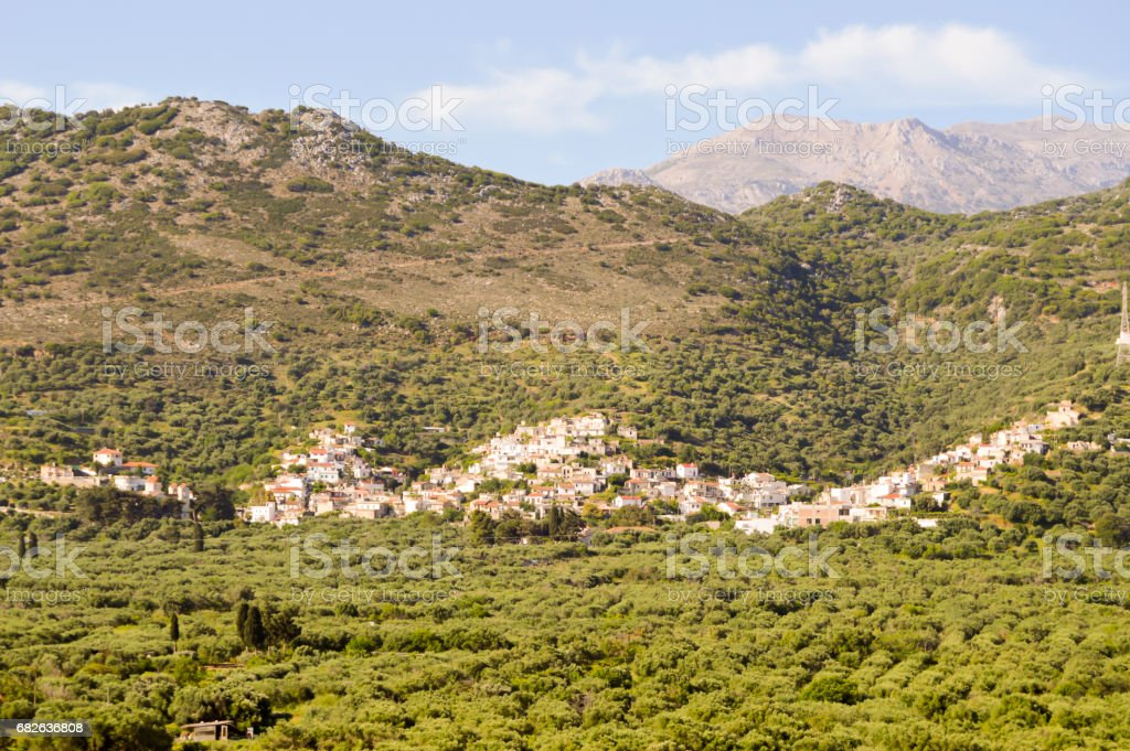 Village Cretan perched on a hill among the olive tree stock photo