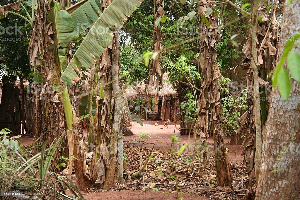 village in jungle stock photo