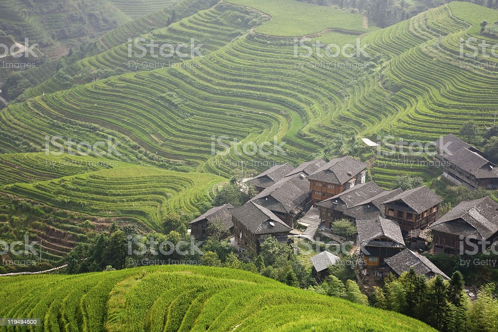 village in  rice terraces royalty-free stock photo