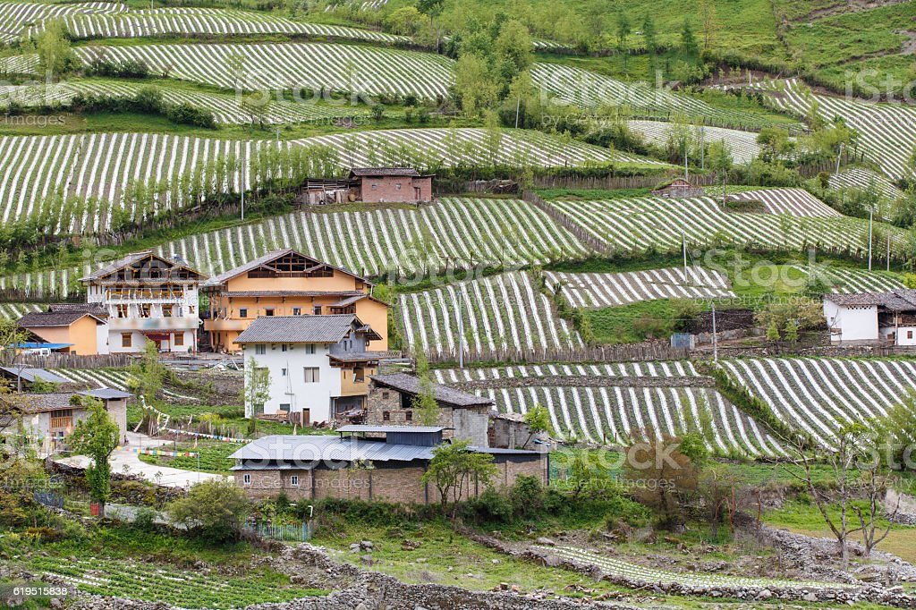 Village in Rilong Town stock photo