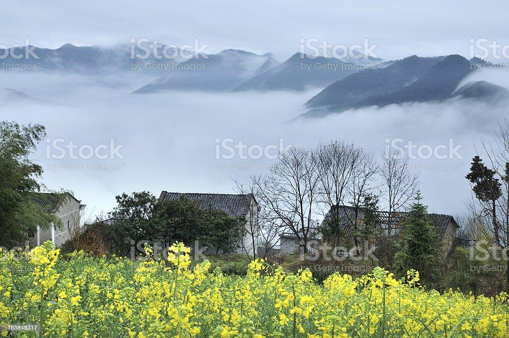 Village in spring stock photo