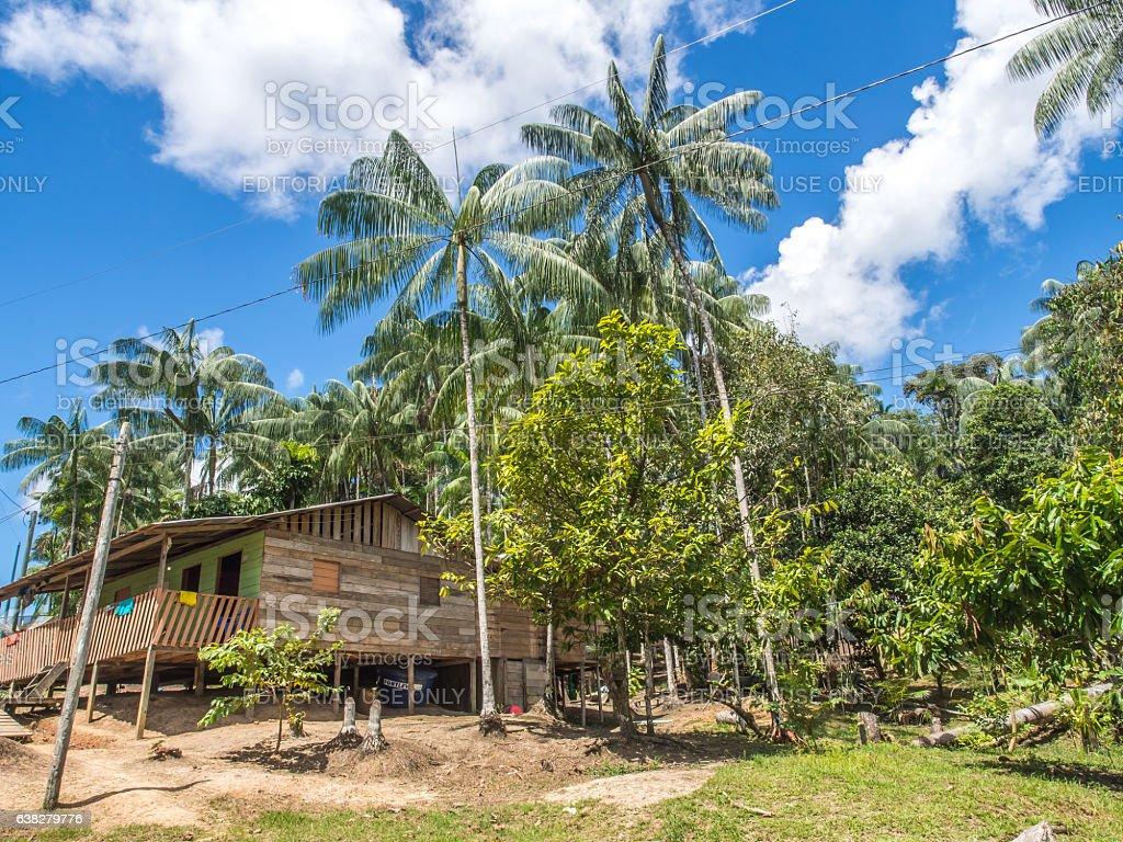 Village in the jungle stock photo