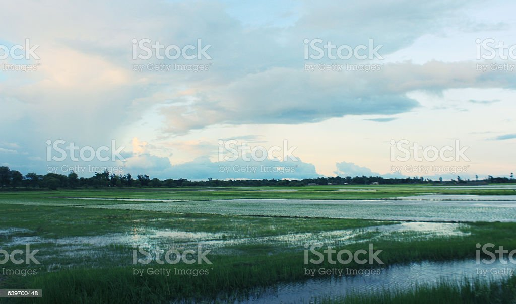Village landscape during mossoon season