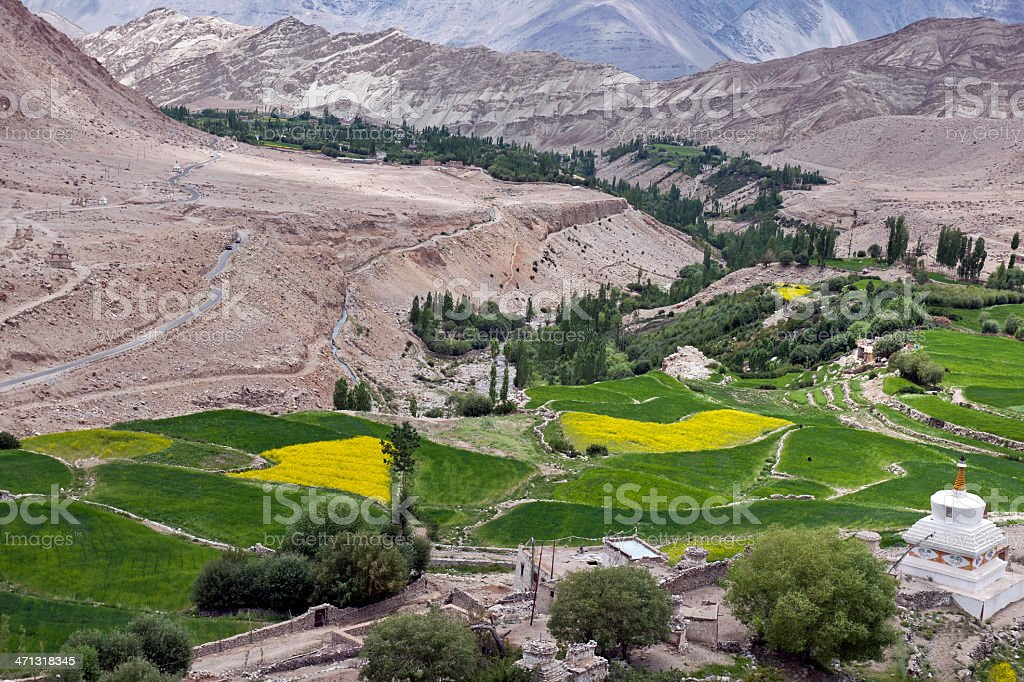 Village Likir in Ladakh Northern India stock photo