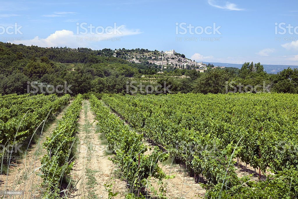 Village of Lacoste and Vineyard in Provence stock photo