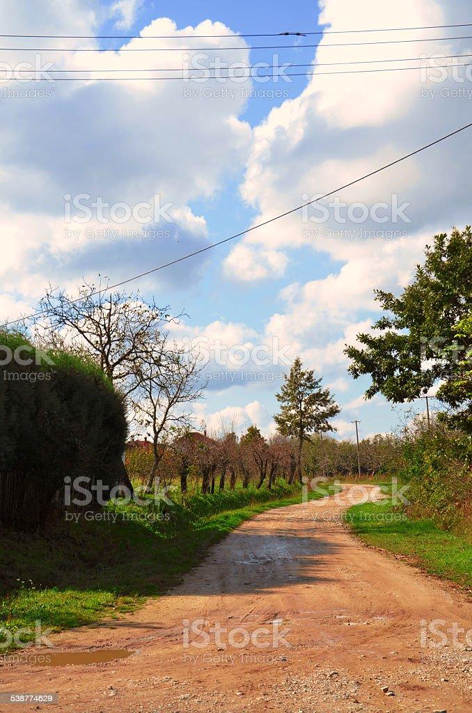Village road foto de stock libre de derechos