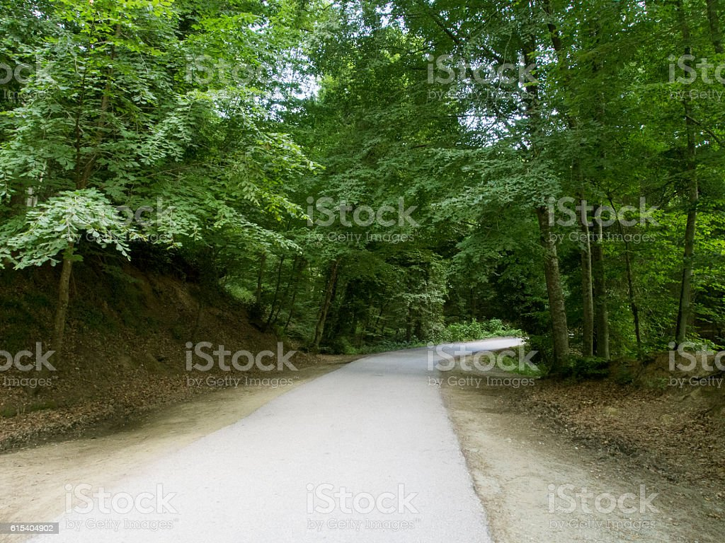 Village Road stock photo