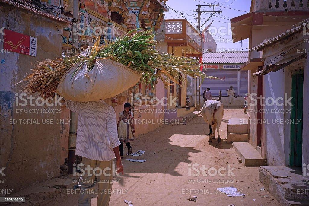 Village scene in the Gujarati Kutch stock photo