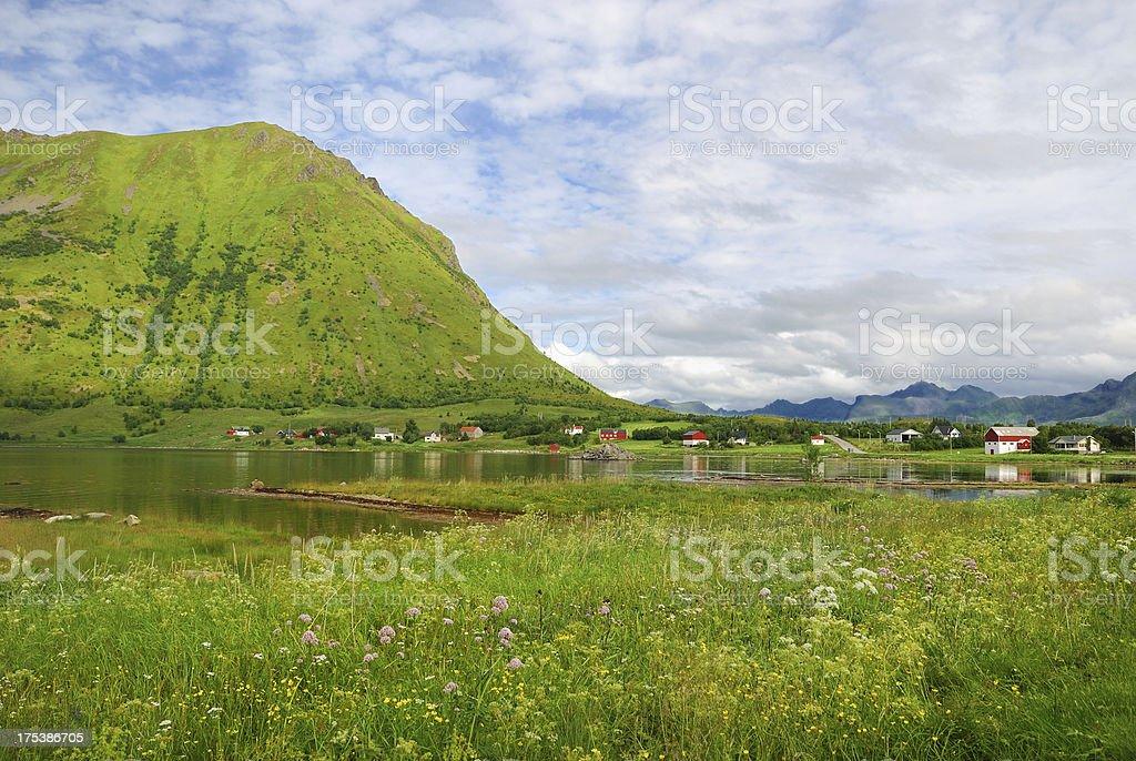 Village under the mountain in summer Lofoten royalty-free stock photo