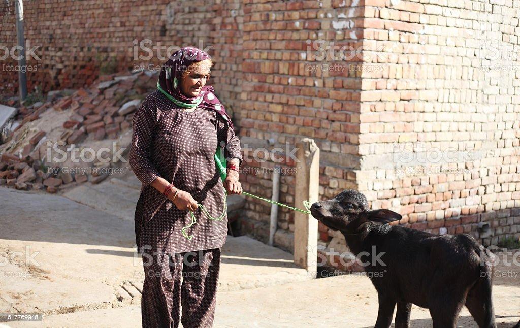 Village women with buffalo kid stock photo