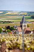 Ville-Dommange Champagne Region France