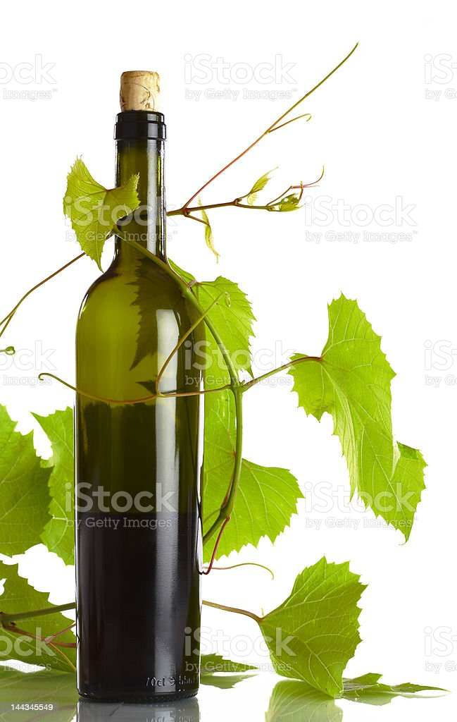 vine and bottle royalty-free stock photo